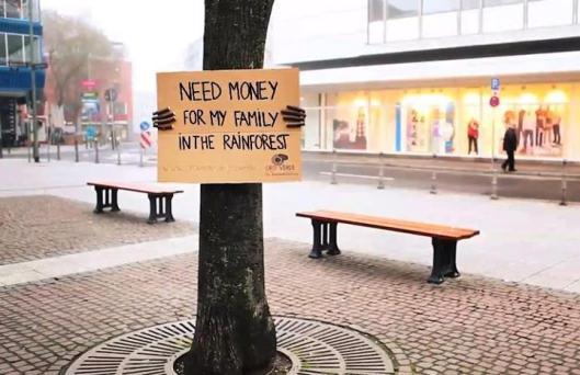 Help a Tree